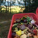 waldorfsky salat